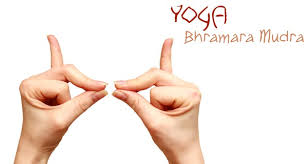 Yoga Mudra Bhramara AllergiesYoga Mudra Bhramara Allergies